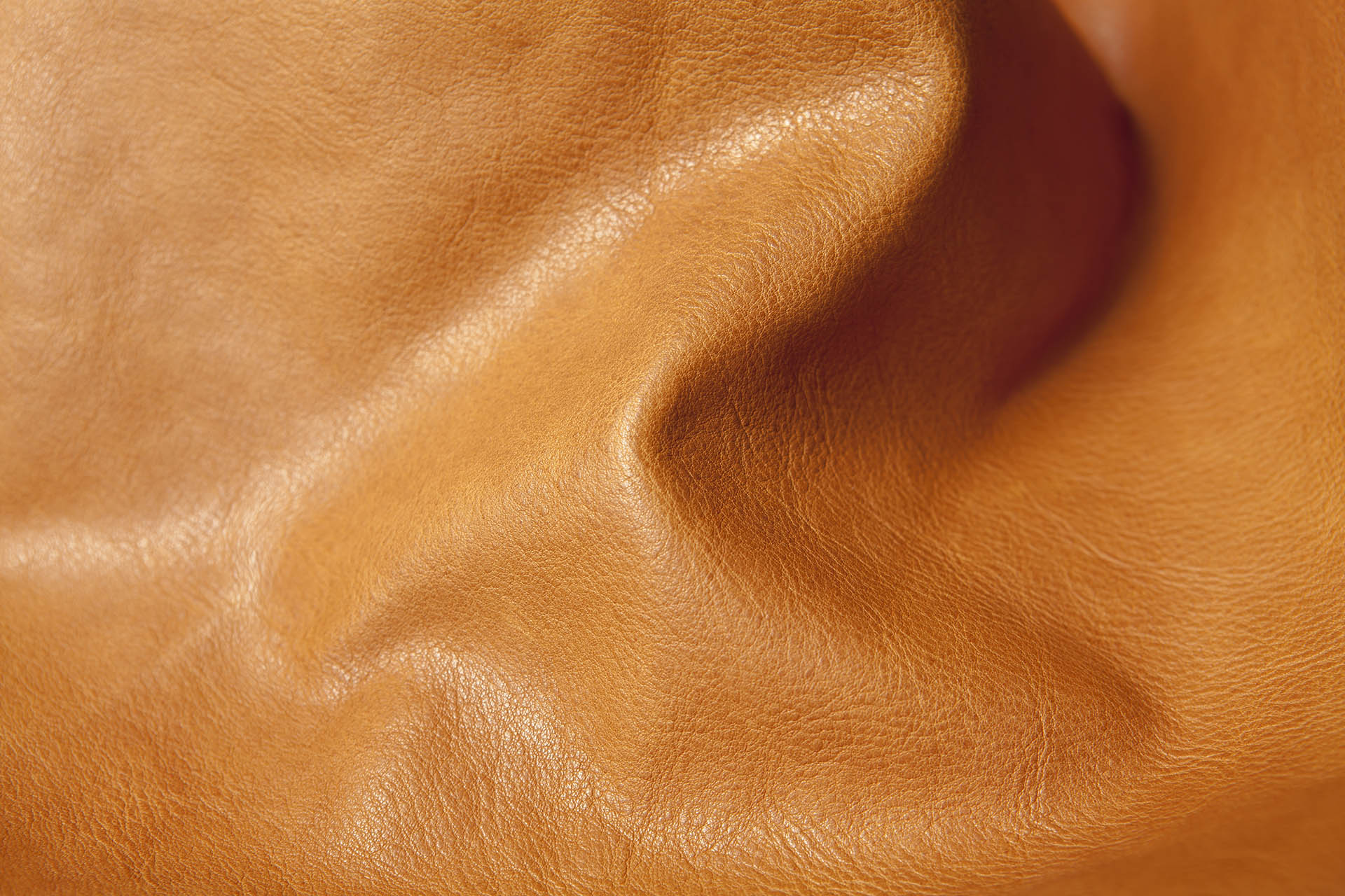 CUSNA Top Quality Leather
